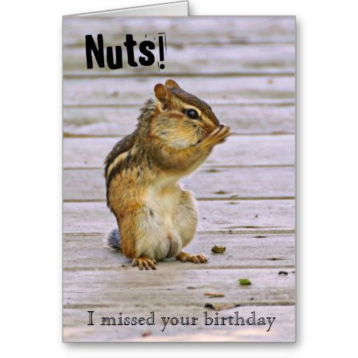 Birthday Wishes, Funny And Birthdays On Pinterest