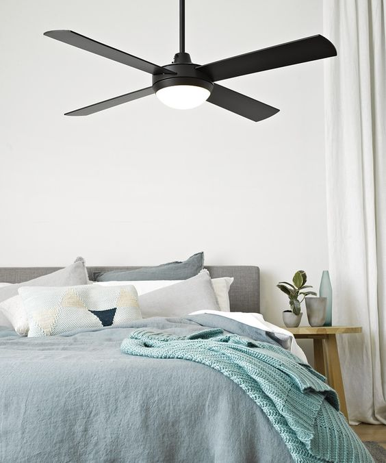 Black Light Bedroom: Black Ceiling Fan, Black Ceiling And Ceiling Fans With