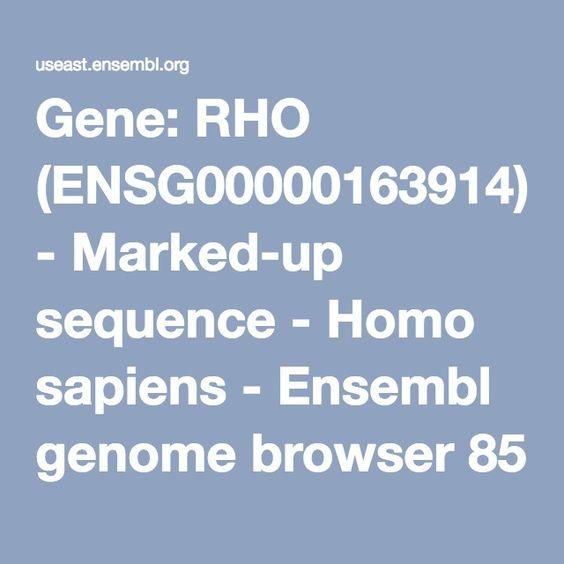 Gene: RHO (ENSG00000163914) - Marked-up sequence - Homo sapiens - Ensembl genome browser 85