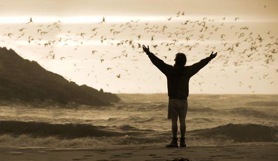 Na Natureza Selvagem - Filmes sobre viajantes.: