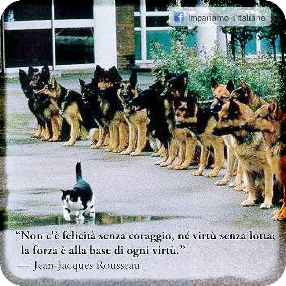 Non c'è felicità senza coraggio, né virtù senza lotta; la forza è alla base di ogni virtù.  Jean-Jacques Rousseau