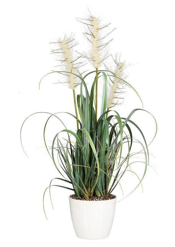 Kunstpflanze, »Miscantusgras«.  Pflegeleicht, das ganze Jahr - dafür steht diese Pflanze. Die Kunstpflanze sieht besonders natürlich aus, die Gräser sind detailgetreu einer echten Pflanze nachempfunden und erfreut so das Auge des Betrachters. Bestens geeignet zum begrünen lichtarmer Ecken, Badezimmer, Schränke oder Regale. Der Grasbusch wird im schwarzem Kunststofftopf geliefert.  Der abgebilde...