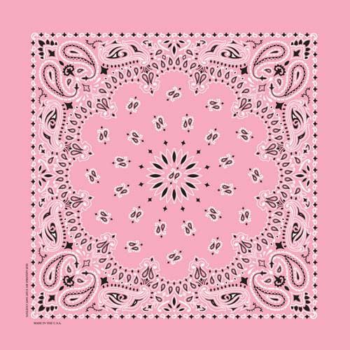 Paisley Bandana (If you need one to match your pony?)