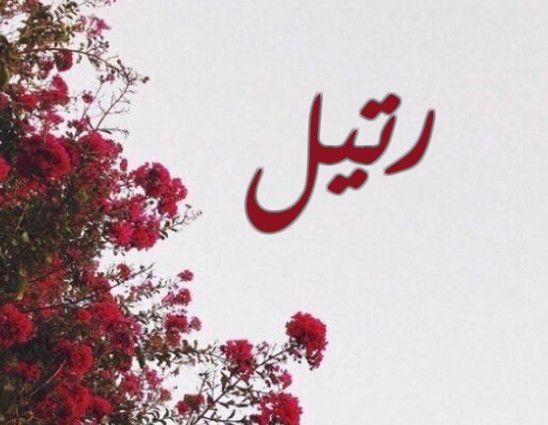 الأسرار والجديد في معنى اسم رتيل Ratel في اللغة وصفاتها موقع مصري In 2021 Arabic Calligraphy Art Calligraphy