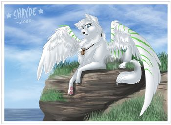 Anime White Wolf with Wings | The Aurora Nights Pack - The ...