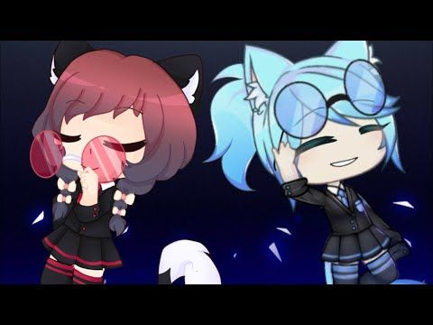 Can T Hold Us Meme Fake Collab With Kittypop Time Kitty300ktimefc Flipaclip Youtube Anime Neko Collab Anime