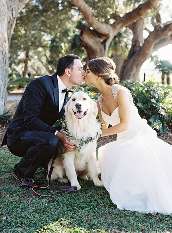 les mariés se font un bisou romantique en compagnie de leur chien d'amour