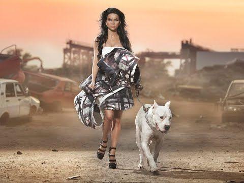 Ph 8885891461 Dogo Argentino Puppies For Sale In Hyderabad Dogo Argentino Dogs For Sale In Hyderabad Youtu In 2020 Fashion Portrait Fashion Wallpaper Glamour Fashion