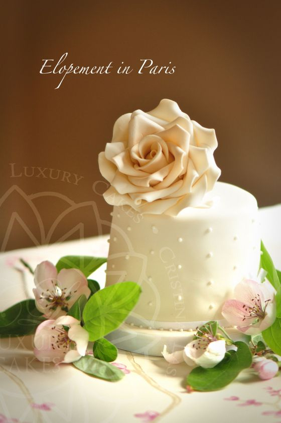 Paris Luxury Cakes
