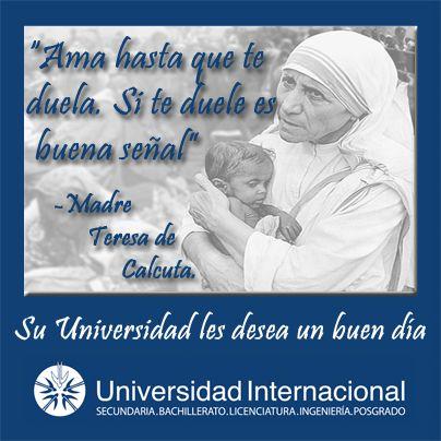 """""""Ama hasta que te duela. Si te duele es buena señal"""" - Madre Teresa de Calcuta"""