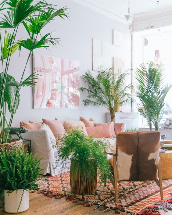 Pink brown the plant and indoor plant decor on pinterest for Decoration urban jungle