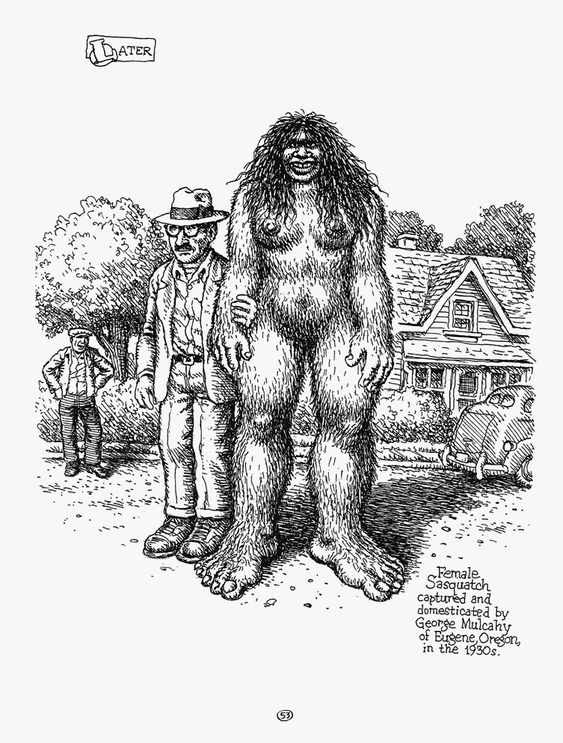 Robert Crumb — Sketchbooks 1964-1982  http://www.weheart.co.uk/2014/04/11/robert-crumb-sketchbooks-1964-1982/