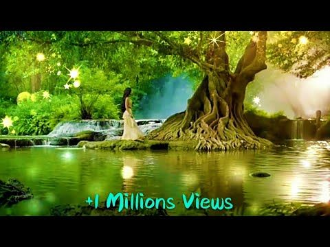 Lovely Girl N Nature Whatsapp Status Video By Prasenjeet Meshram Youtube Nature Gif Nature New Whatsapp Video Download