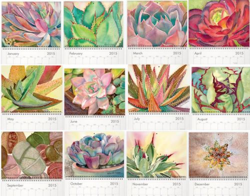 Images from Debra Lee Baldwin's Succulent Watercolor Calendar - Succulents and Sunshine