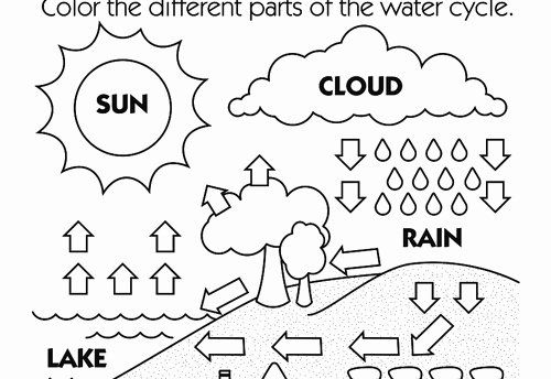 Water Cycle Coloring Page Fresh 15 Best Of Super Teacher Worksheets Coloring Pages Coloring Pages Water Cycle Owl Coloring Pages