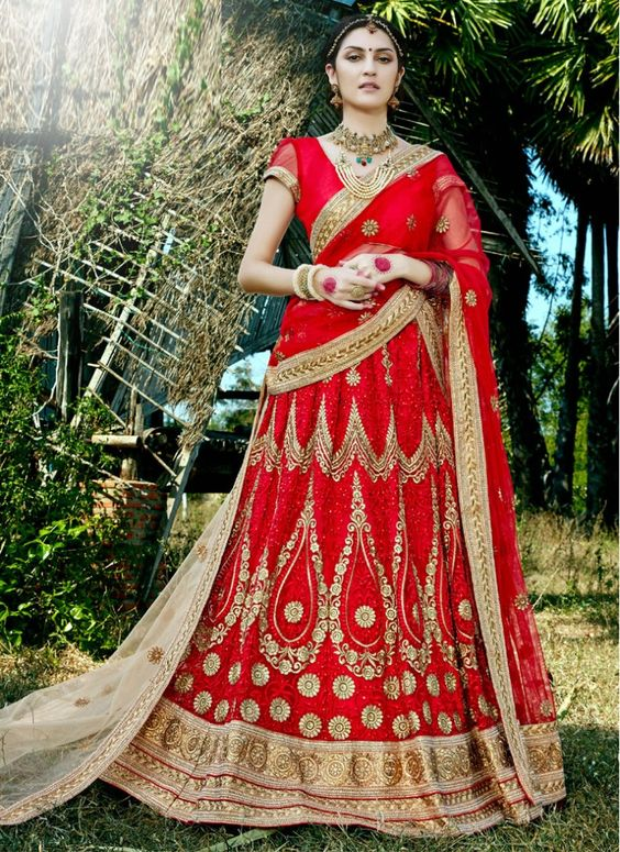 Pristine Patch Border Net Red Bridal Lehenga choli: