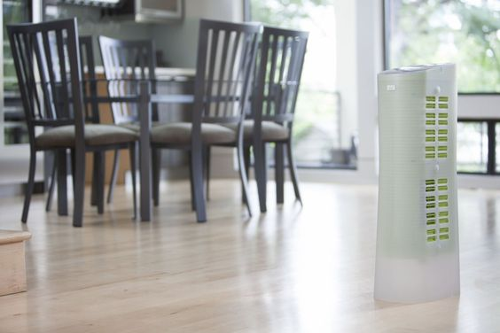 An air purifier that's perfect for handling summer pollen and quickly ridding your air of pollutants. #paypalit