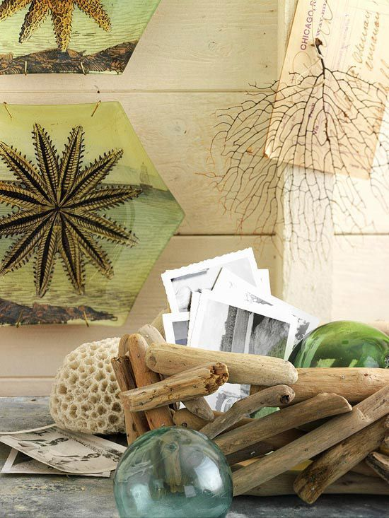 52 Ideen, um Driftwood Verwendung Im Wohnkultur   DigsDigs