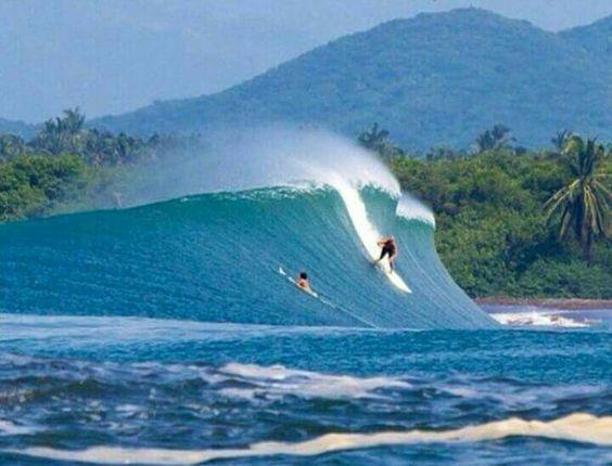 photo de surf 18171