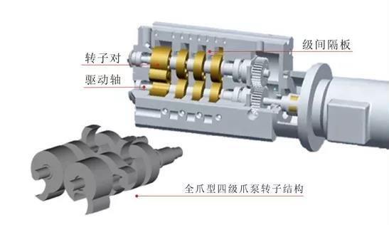 Claw Type Vacuum Pump Structure1 Vacuum Pump Vacuums Pumps