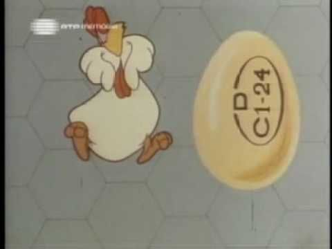 A galinha põe... e você dispõe