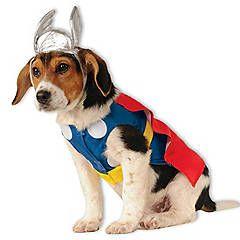 Pet Dog Costume - Marvel Thor