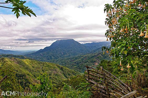 Exploring Kinabalu Park UNESCO Site in Malaysian Borneo. #Malaysia #Sabah