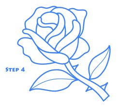 rose_drawing_step4.gif (250×220)