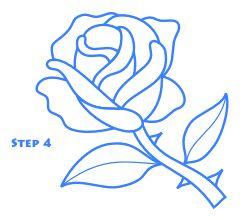 rose_drawing_step4.gif (250×220)