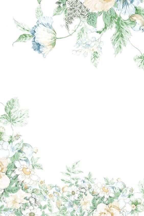 Frames Image By Mesc Flower Backgrounds Flower Background