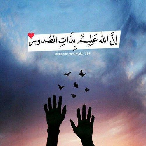 يارب أدعوك دعاء لا أعرف كيف أرتبه فأنت تبصر الفؤاد وتلمس حاجة قلبي بيدك فاللهم أيام كما أحب وحالا إلى ما هو Islamic Quotes Quran Islamic Quotes Islam