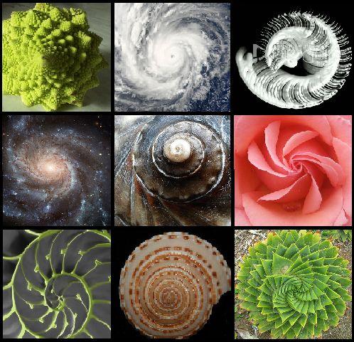 Spiralen