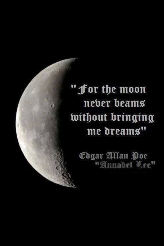 Edgar Allan Poe Love Quotes Classy For The Moon Never Beams Without Bringing Me Dreams  Edgar Allan