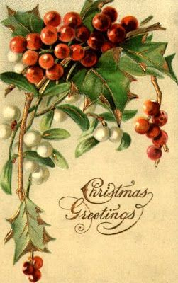 bumble button: Beautiful Antique Postcards featuring Sprigs of Holly: