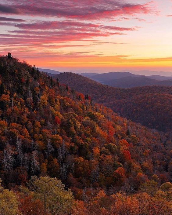 🍂 Fall sunrise in North Carolina. 🍂 | Photo: ™@usinterior #regram