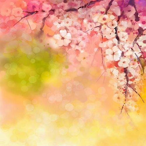 Watercolor Flower Photography Backdrop For Newborn Background