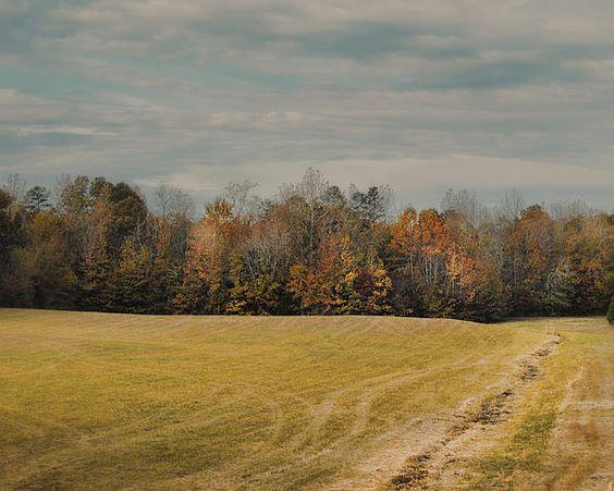 November Fields - Autumn Landscape