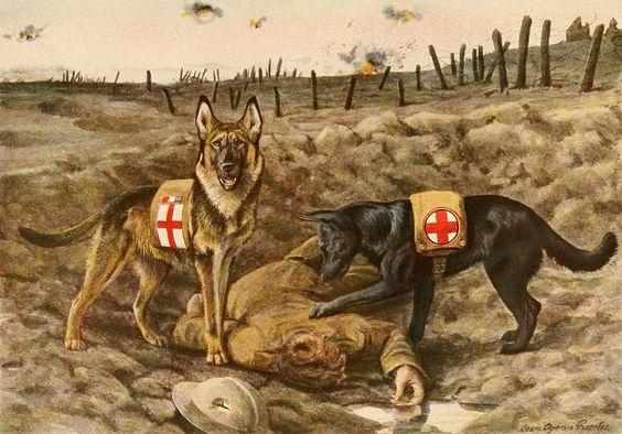 EST SINE DIE progetta e realizza urne cinerarie e bare personalizzate per i cani delle Unita' Cinofile che hanno prestato servizio nelle forze dell'Ordine