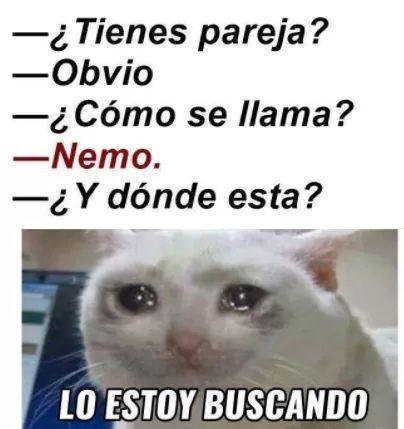 Ctm Pensar Que Me Hizo El Dia De San Valentin New Memes Funny Spanish Memes Memes En Espanol