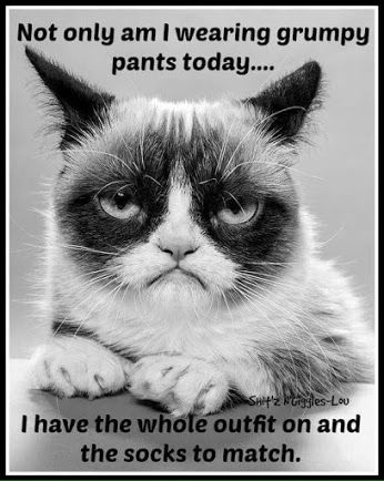 I'm not grumpy today, but this is pretty funny and I think grumpy cat is my spirit animal. Lol.: