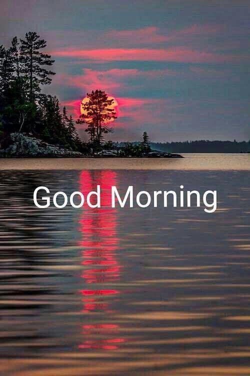 Pin Di Nandhapat Su Good Morning Quotes Citazioni Buongiorno Buongiorno Messaggi Buongiorno Saluti