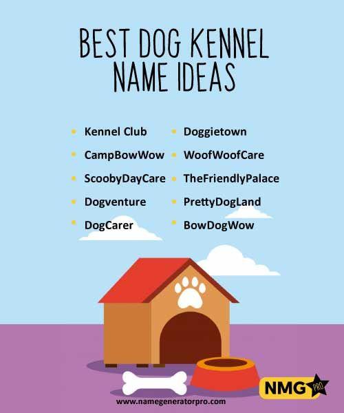 Dog Kennel Name Ideas Name Generator Pro Dog Kennel Popular Dog Names Name Generator