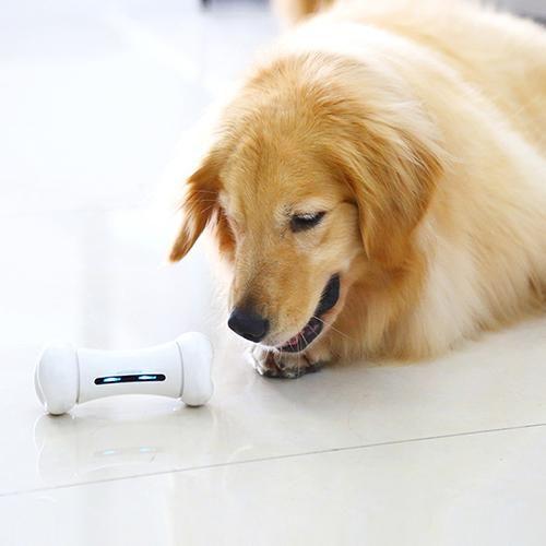 Wickedbone Smart Pet Emotional Interaction Bone Toy Smart Dog Cat