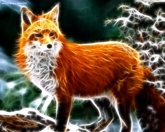 Fractals animal wallpaper and wallpaper desktop on pinterest - 3d animal wallpaper ...