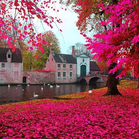 Brujas,Belgica.