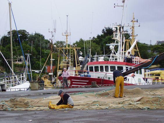 Puerto de pescadores de Castletownbere (Eire)