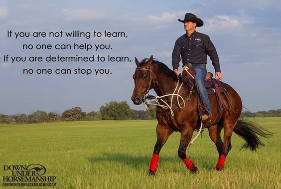 Clinton Anderson, Down Under Horsemanship If you are not willing to learn, no one can help you. If you are determined to learn, no one can stop you.