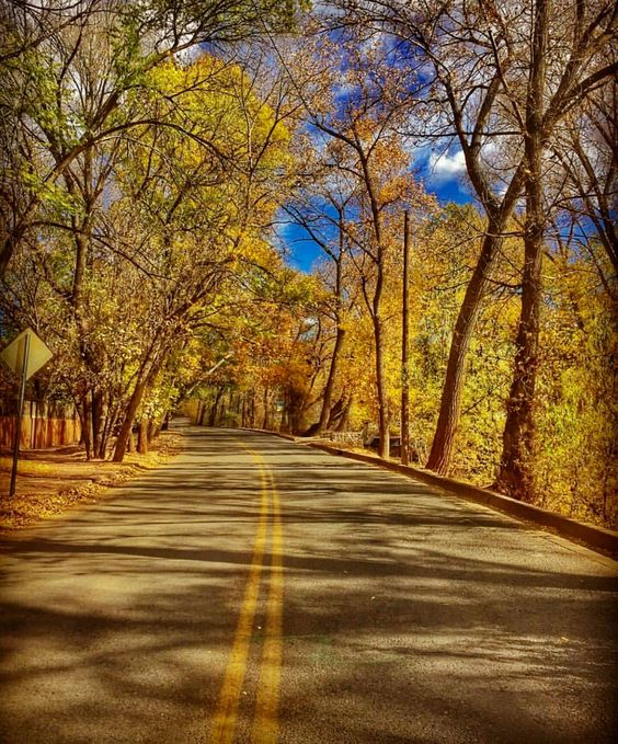 Take a fall drive threw Santa Fe NM. better hurry tho...Winter is almost here!