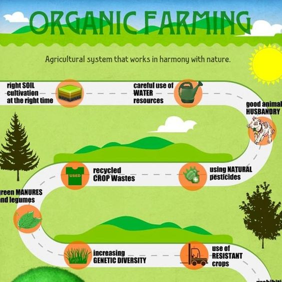 poster ideas on organic farming in india - Google Search ...