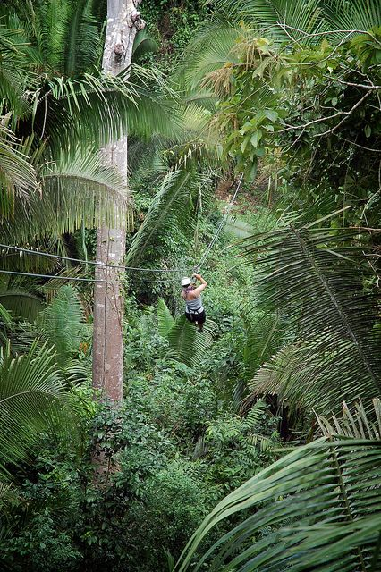 Ziplining through the jungle in Belize